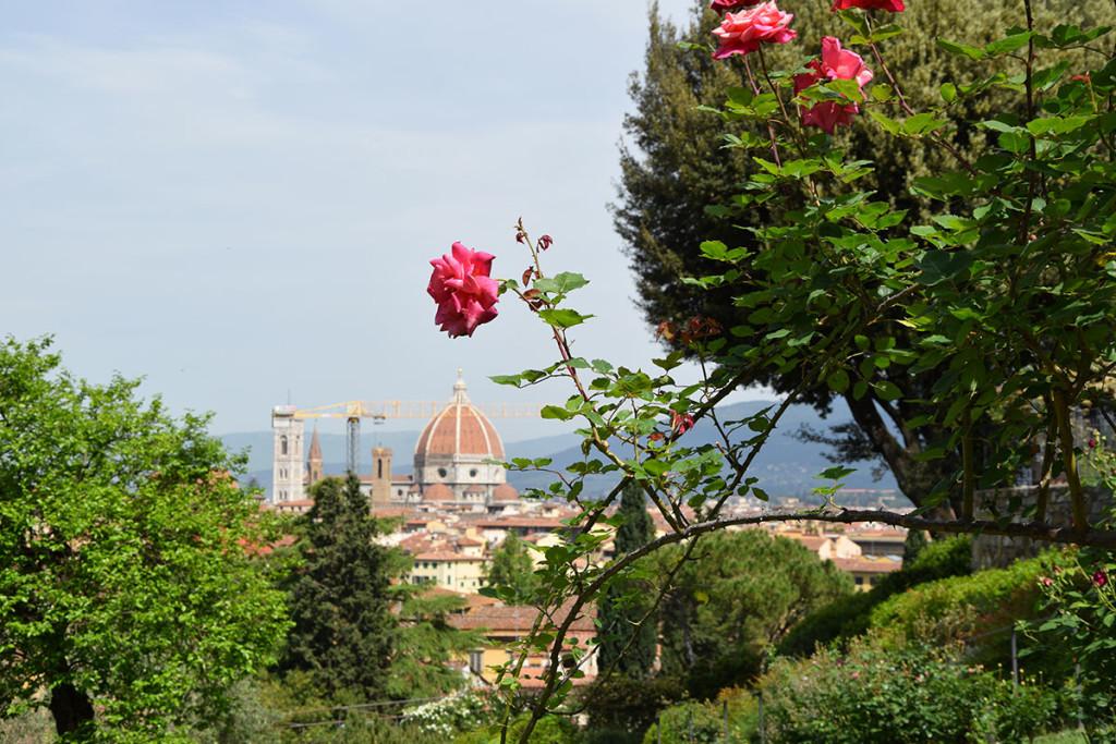 giardino-delle-rose-7